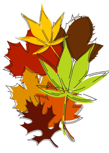 a drawing of fall leaves